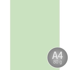 Image Coloraction A4, 80g, 500ark, enggrøn