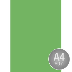 Image Coloraction A4, 80g, 500ark, grøn