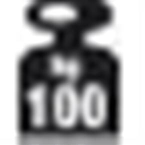 META Clip 100 kg, 300x100x(2x60), Grund, Pulverlak