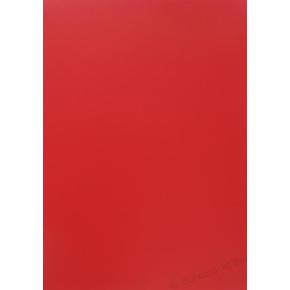 Forside A4 300 my, rød
