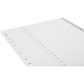 Budget registre A4, 1-20, plast