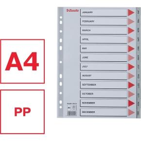 Esselte register A4, jan-dec (engelsk), plast, grå