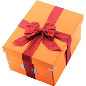 Leitz Click & Store opbevaringsboks medium, orange