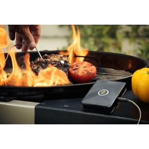 WeGrill One Smart Bluetooth Grill Thermometer
