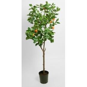 Appelsintræ, grøn/orange, 150cm