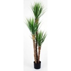 Yucca Rostrata, grøn, 150cm