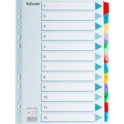 Esselte Mylar register A4, 1-12