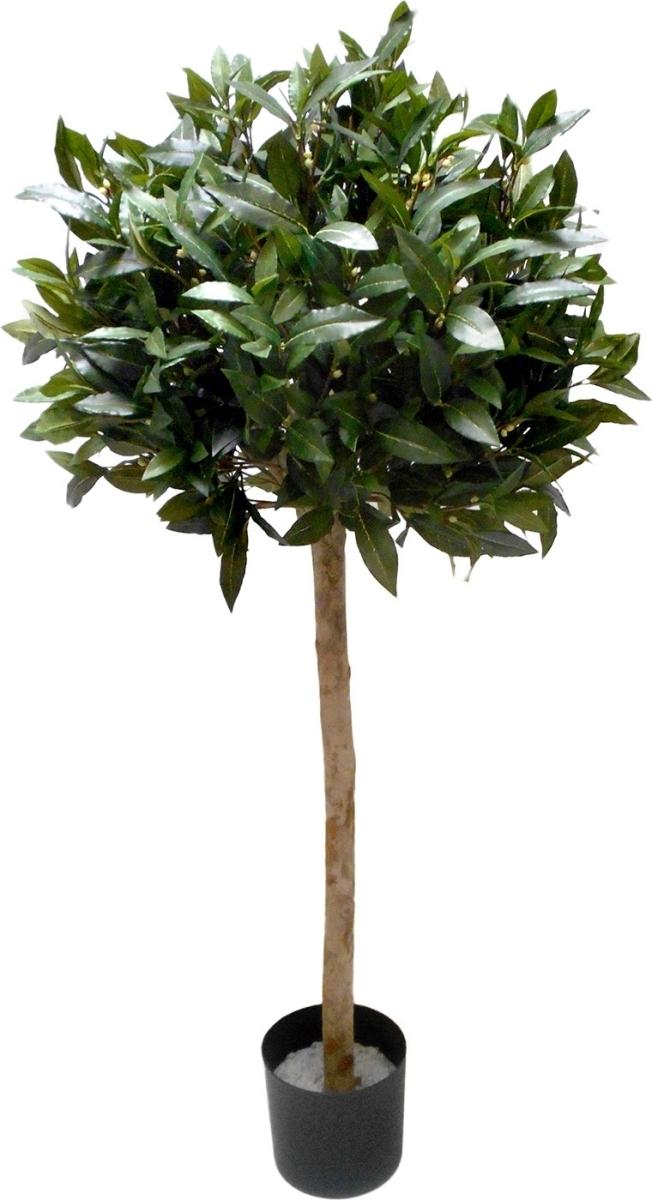 lav pris træ