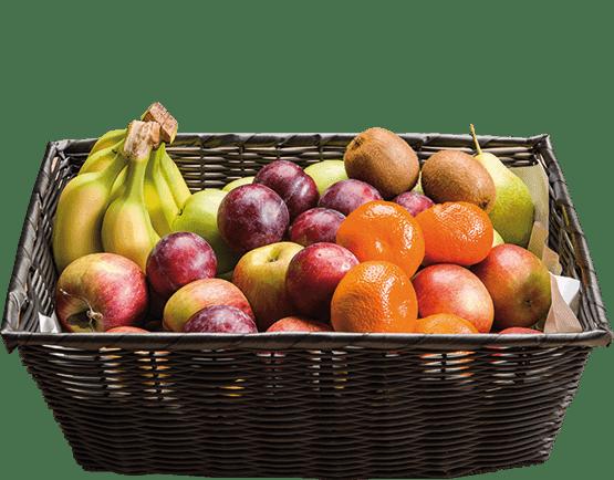 Basis frugtkurv