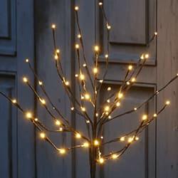 Lystræer og juletræer