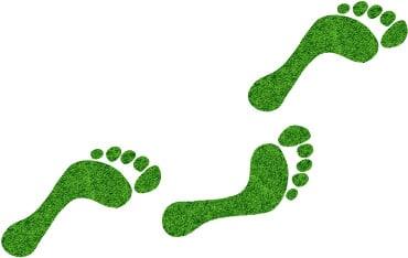 groenne_fodspor