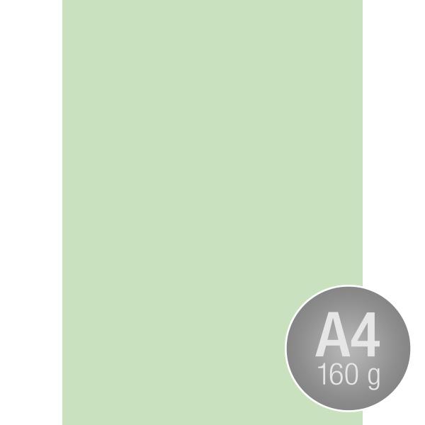 Image Coloraction A4, 160g, 250ark, enggrøn
