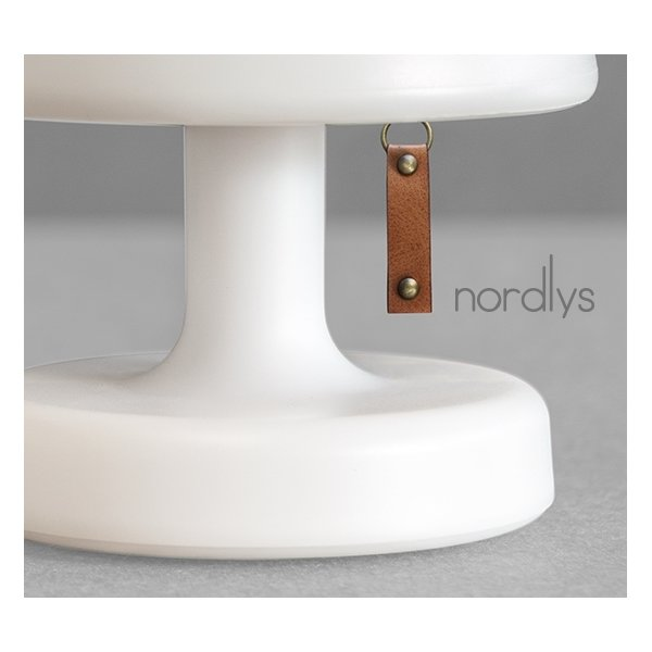 Gave: Nordlys LED lampe
