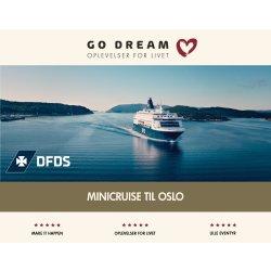 Oplevelsesgave - Minicruise til Oslo