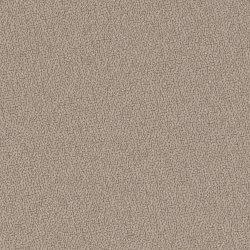 Softline bordskærmvæg beige B2000xH590 mm