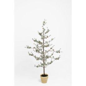 Lærketræ H135 cm