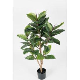 Gummitræ H90 cm