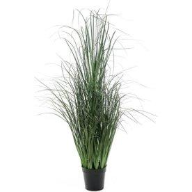 Græs i potte H120 cm